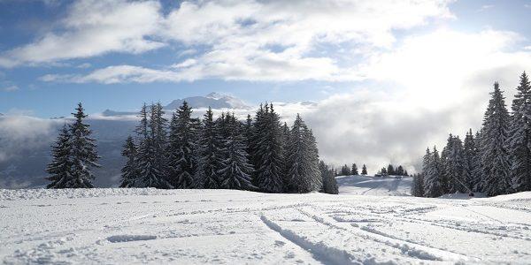Snow alert : 45cm de neige fraîche à Combloux