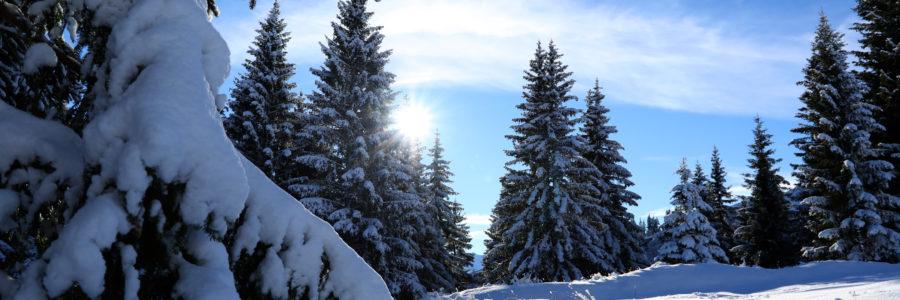 Alerte neige : ouverture exceptionnelle du domaine skiable